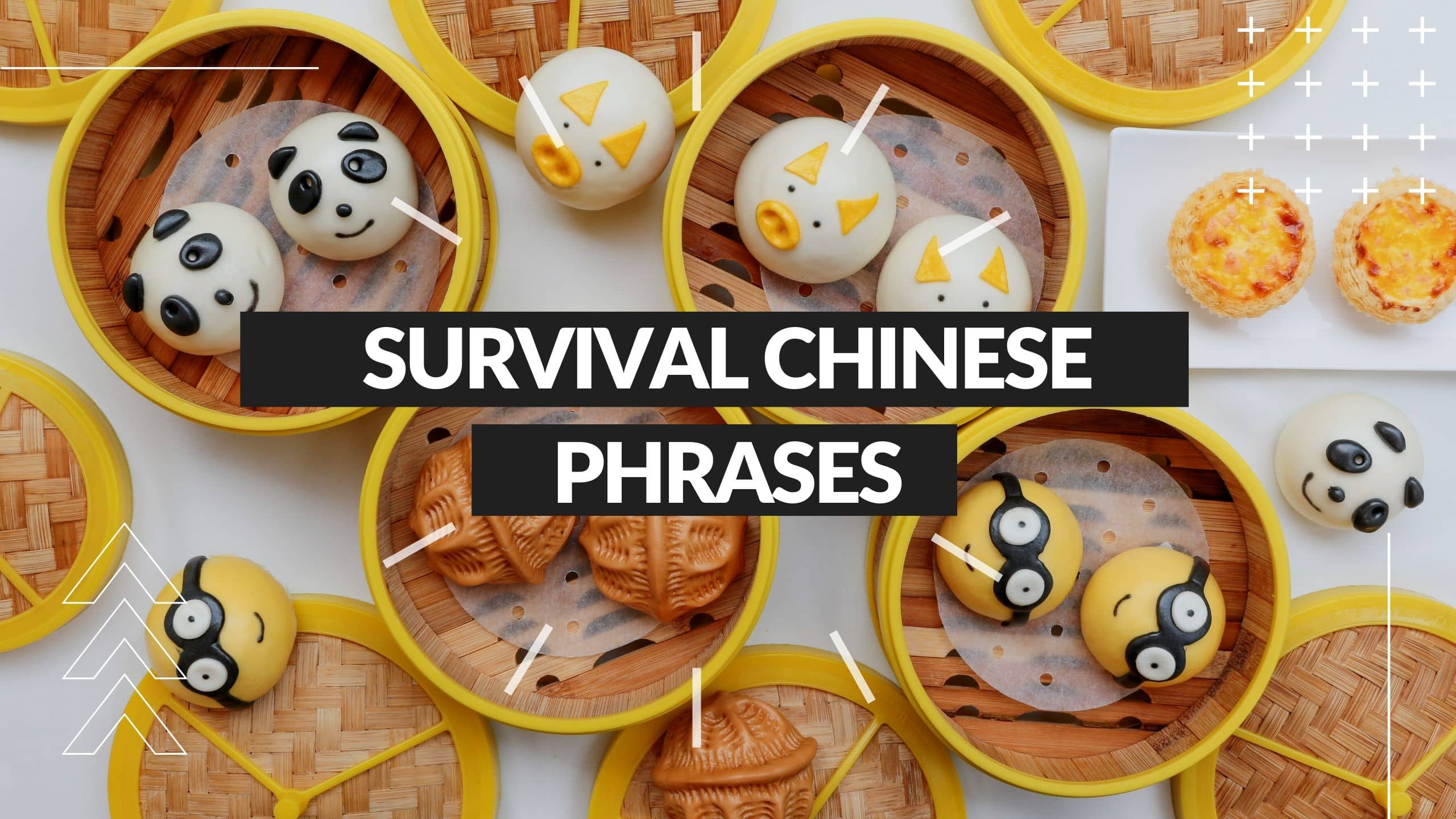 Survival Chinese Phrases